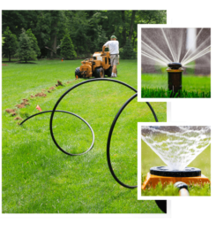 Customised Garden Design Services